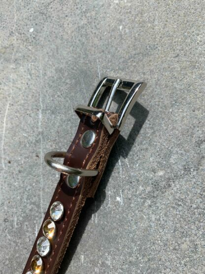 Sluiting bruine halsband