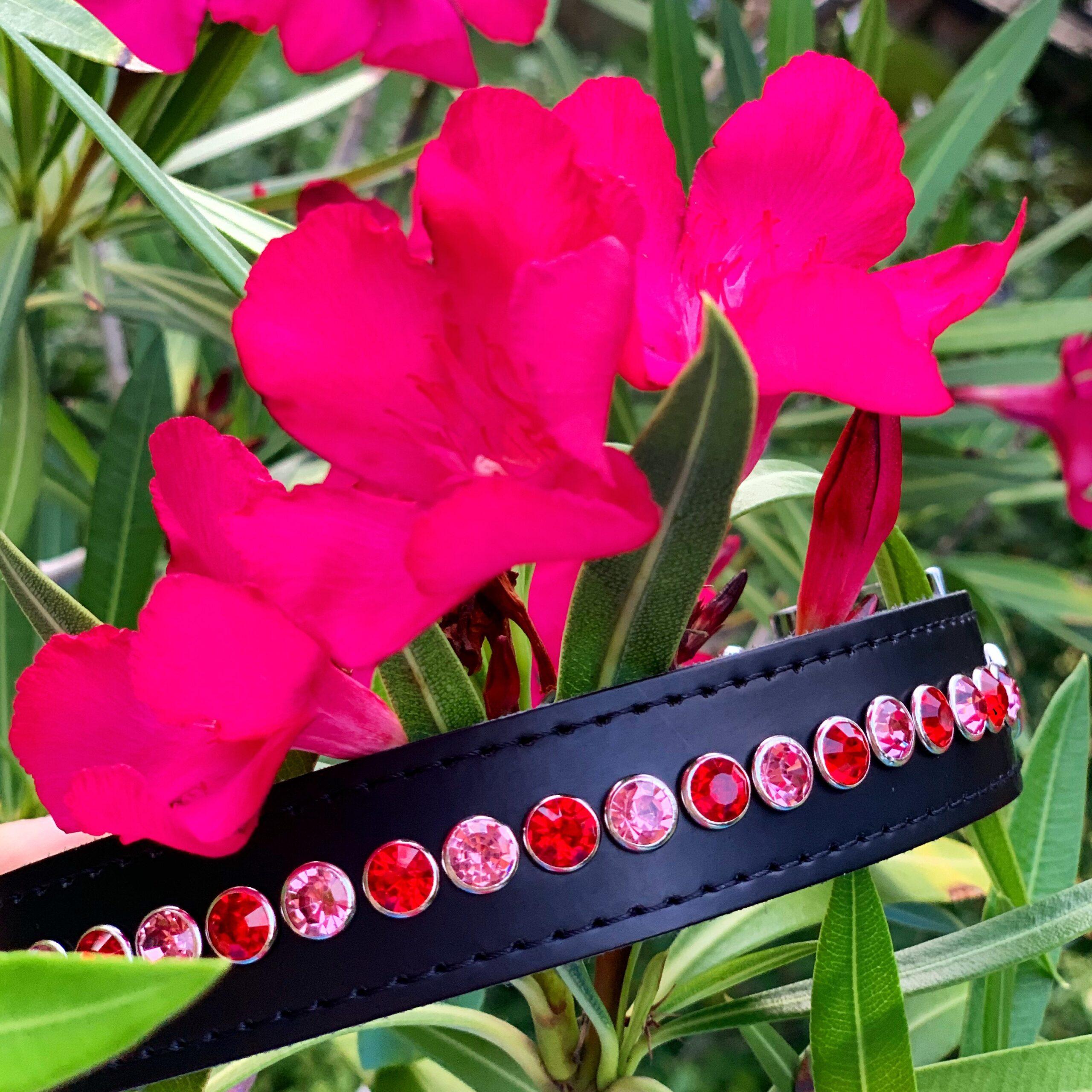Zelf ontwerpen, halsbandje. Lipstick - Pink